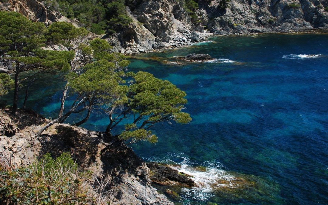 Oiko Logica in the Mediterranean with UNEP