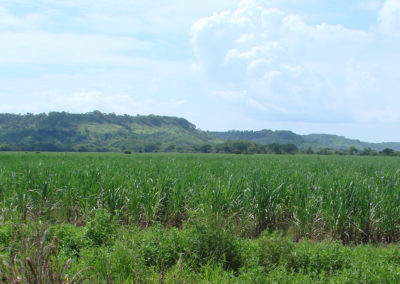 Software for Climate Change and Land Use Planning in Costa Rica