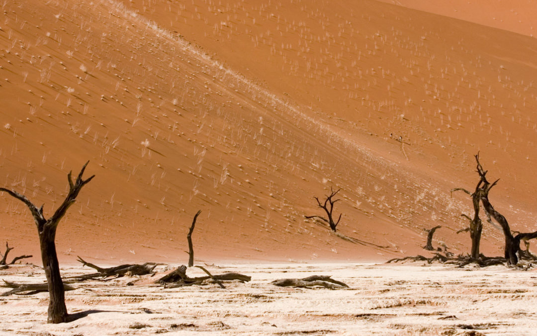 Reducing Climate Risk from Energy Investment in Namibia